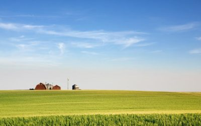 Replacement property: How to defer capital gains on farmland